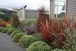 New Look Landscapes Dunedin, garden
