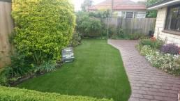 New Look Landscapes Dunedin Unreal Grass