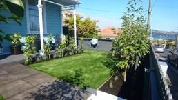 New Look Landscapes Dunedin Fake Lawn