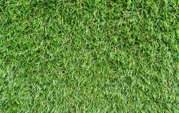 Artificial Grass Dunedin